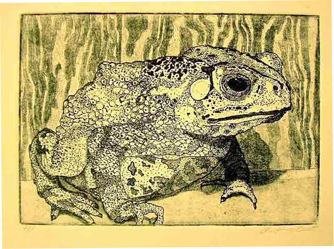 "Zinc Etching 5 "" x 7"" Rives BFK Paper Printed in Carbon Black I find nature to be fascinating. I often choose animals and creatures as my subjects."