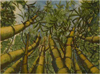 Robert Viana - Printmaker - Acrylic on Canvas thumbnail - Bamboo
