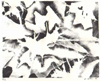 Robert Viana - Printmaker Stone Litho -  thumbnail - Ice or Leaves?
